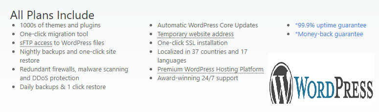 Developer WordPress Hosting Plan – PowerHoster